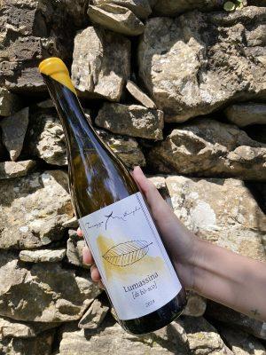 Lumassina di Bosco I.G.T. Colline Savonesi - Bottiglia da 75 cl - Terrazze Singhie, anno 2019
