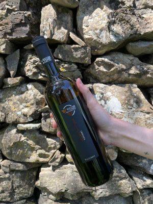 Vermentino Rocche del Gatto - Bottiglia da 75 cl - Riviera Ligure di Ponente DOC, anno 2018