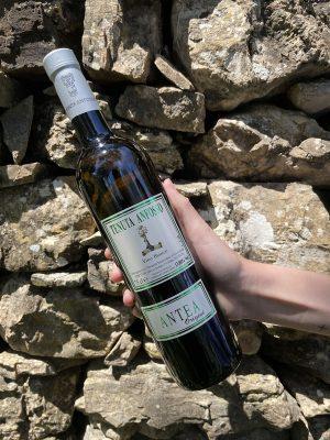 Vino Bianco da tavola Antea - Bottiglia da 75 cl - Tenuta Anfosso, anno 2018